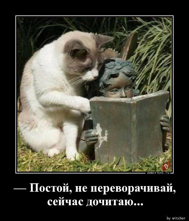 — Постой, не переворачивай,   сейчас дочитаю...