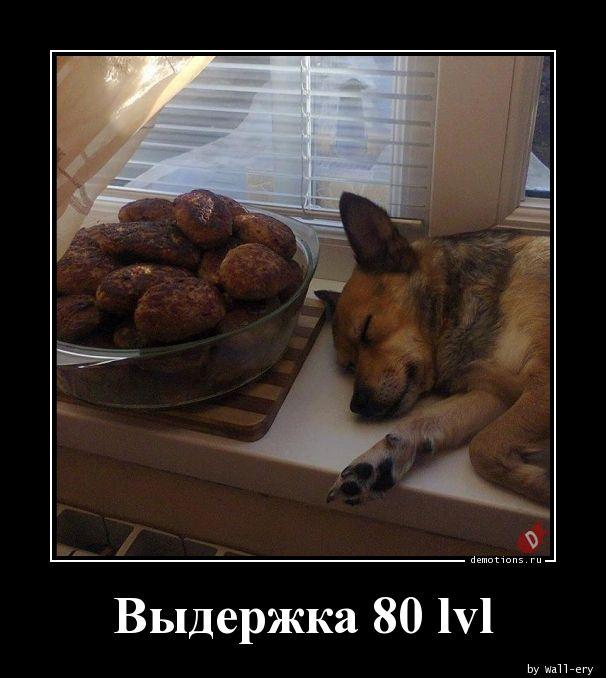 Выдержка 80 lvl