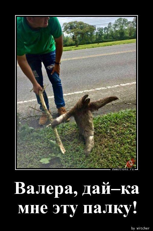 Валера, дай–ка  мне эту палку!