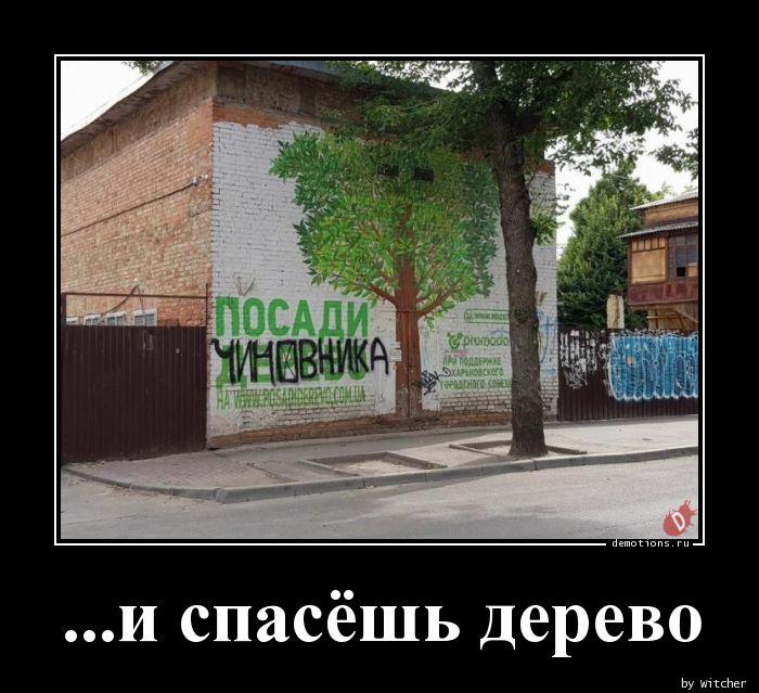 ...и спасёшь дерево
