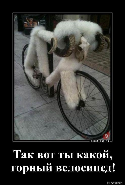 Так вот ты какой,  горный велосипед!