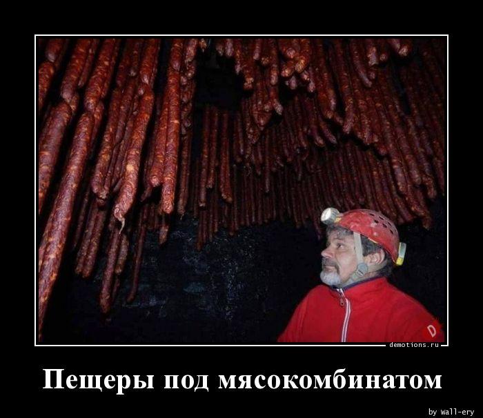 Пещеры под мясокомбинатом