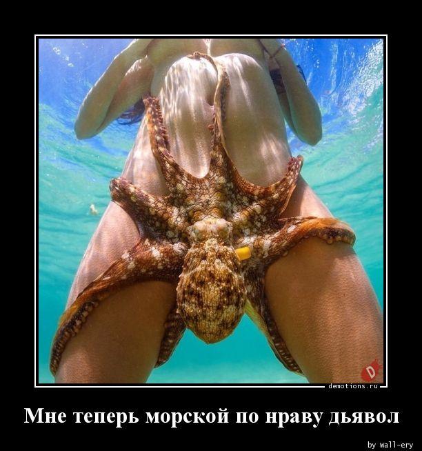 Мне теперь морской по нраву дьявол