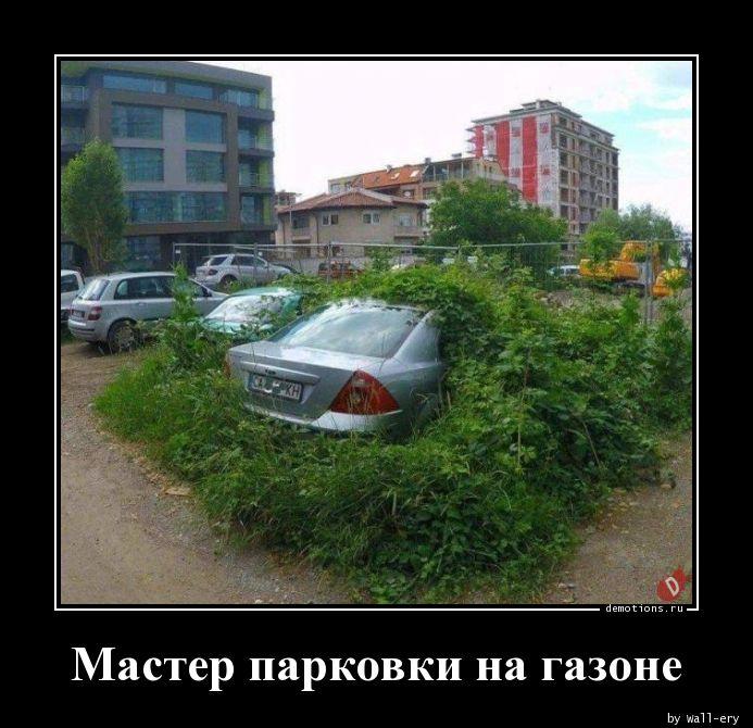 Мастер парковки на газоне