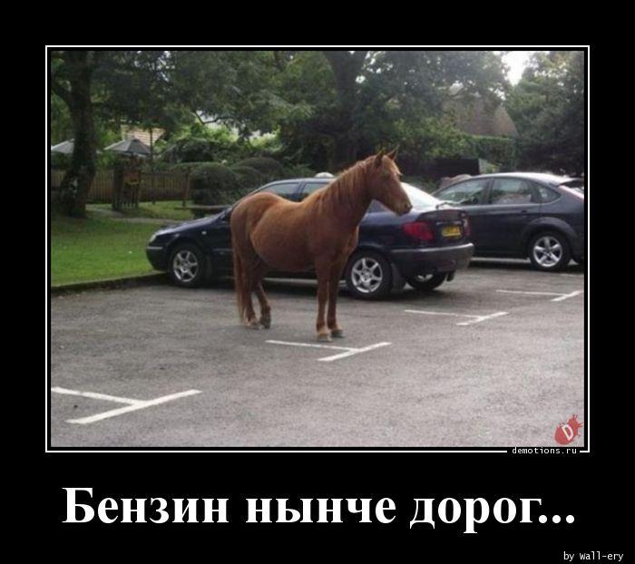 Бензин нынче дорог...