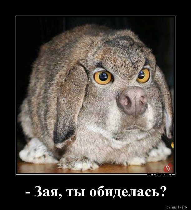 - Зая, ты обиделась?