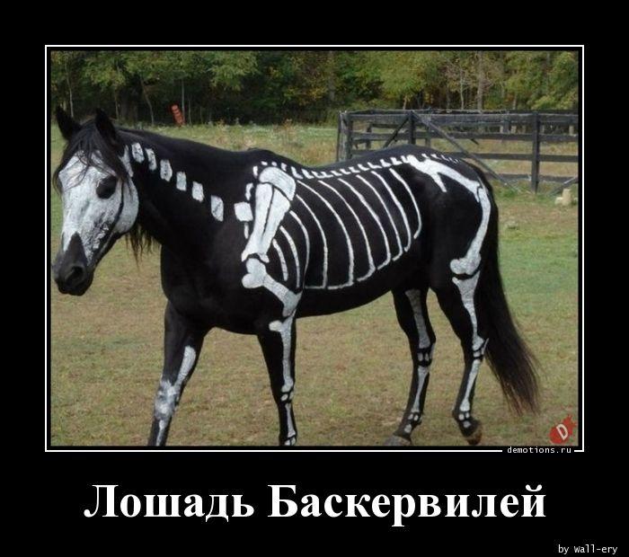 Лошадь Баскервилей