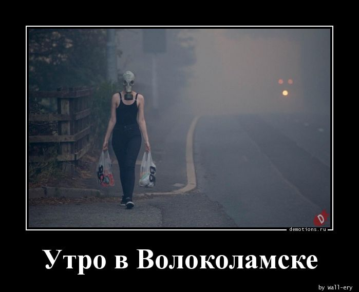 Утро в Волоколамске