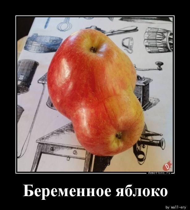 Беременное яблоко