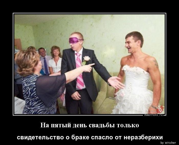 На пятый день свадьбы только