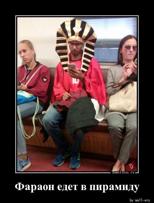 Фараон едет в пирамиду