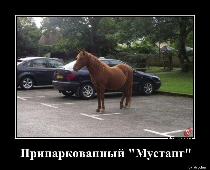 Припаркованный