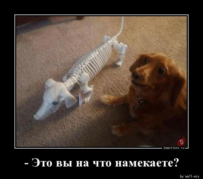 - Это вы на что намекаете?