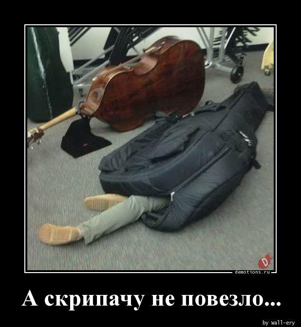 А скрипачу не повезло...
