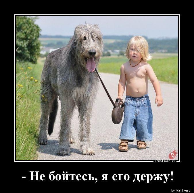 - Не бойтесь, я его держу!