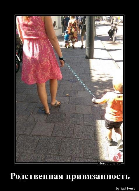 Родственная привязанность