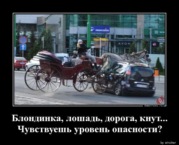 Блондинка, лошадь, дорога, кнут... Чувствуешь уровень опасности?