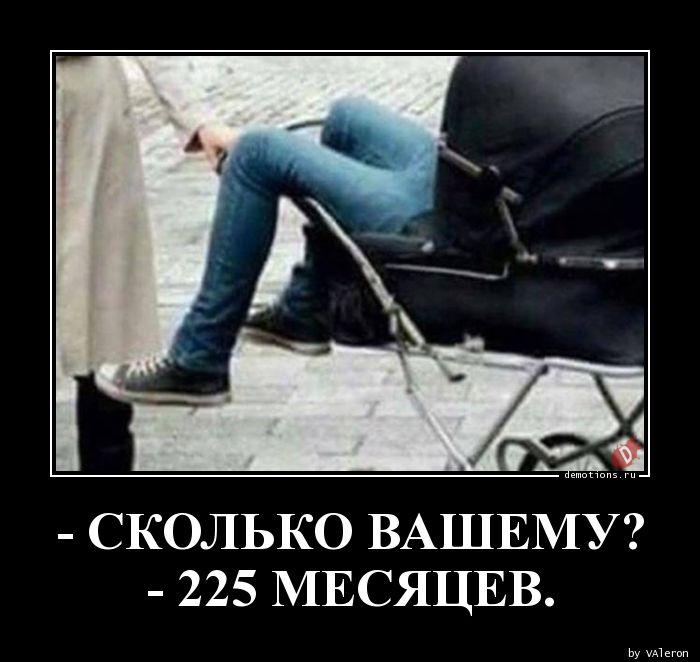 - СКОЛЬКО ВАШЕМУ?n- 225 МЕСЯЦЕВ.