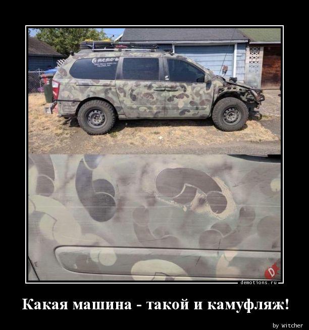 Какая машина - такой и камуфляж!