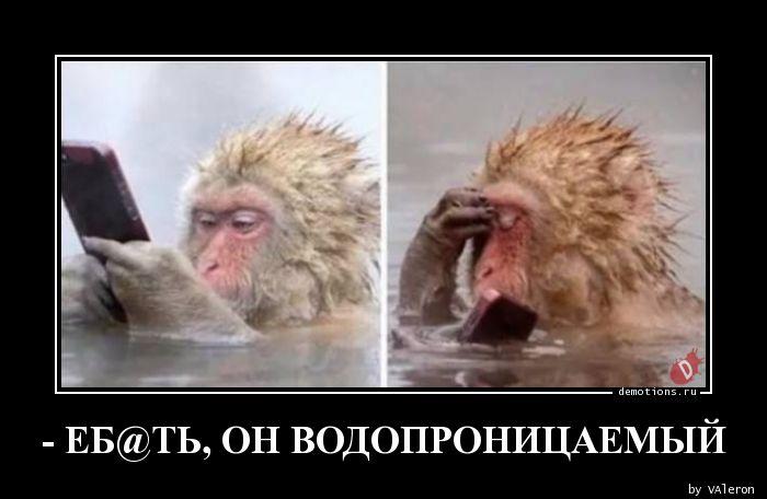 - ЕБ@ТЬ, ОН ВОДОПРОНИЦАЕМЫЙ