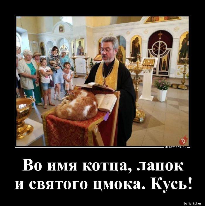 Во имя котца, лапок  и святого цмока. Кусь!