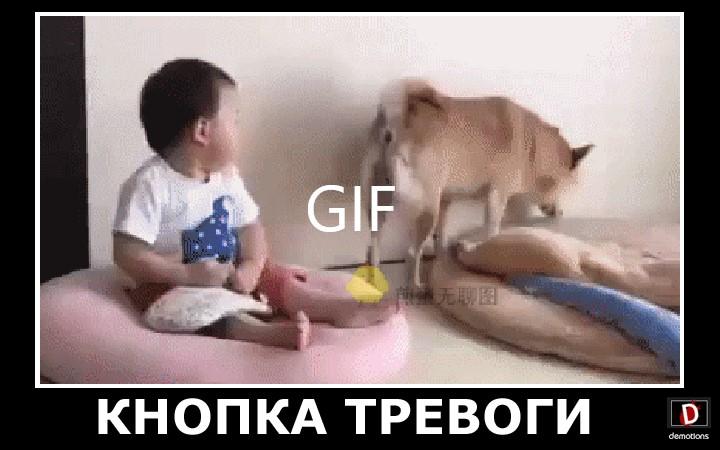 КНОПКА ТРЕВОГИ