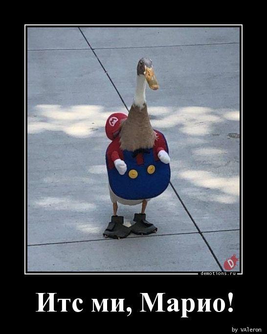 Итс ми, Марио!