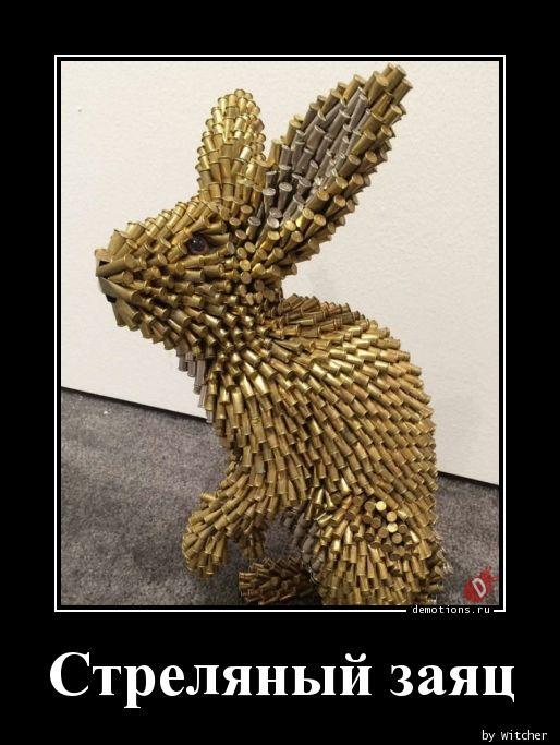 Стреляный заяц