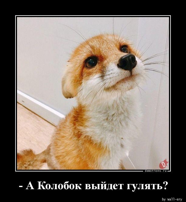 - А Колобок выйдет гулять?