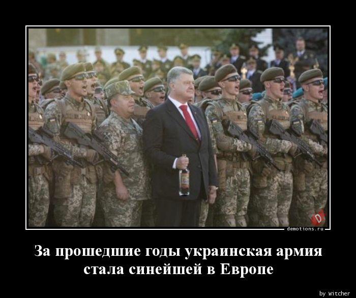 За прошедшие годы украинская армия стала синейшей в Европе