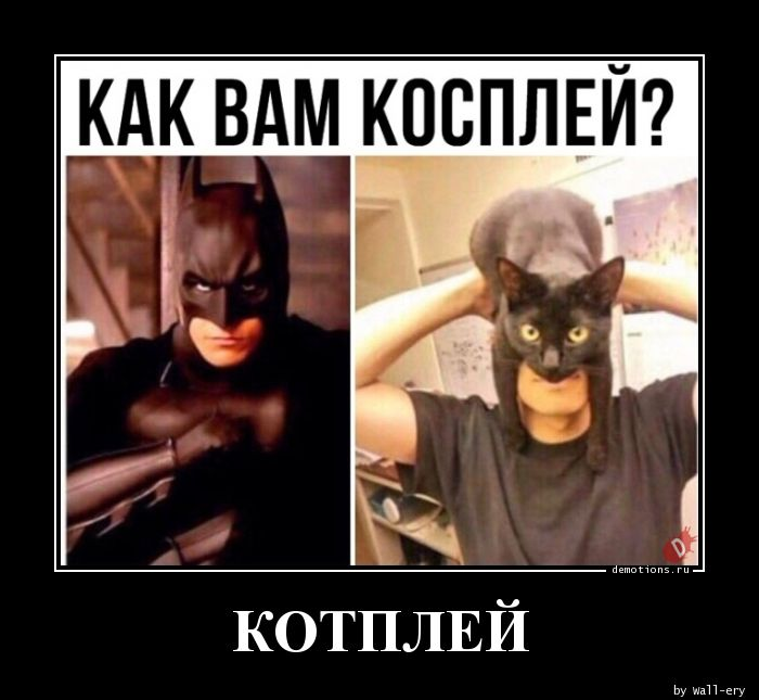 КОТПЛЕЙ