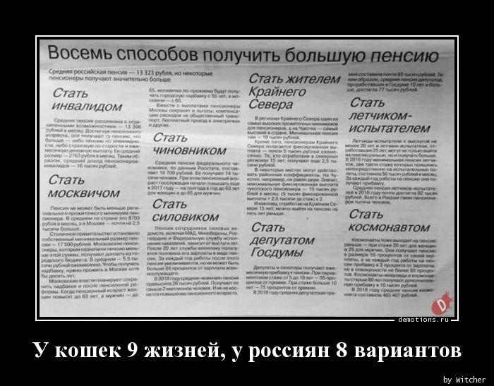 У кошек 9 жизней, у россиян 8 вариантов