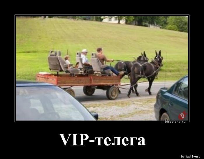 VIP-телега
