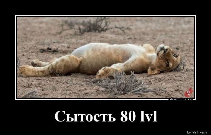 Сытость 80 lvl