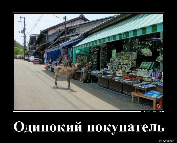 Одинокий покупатель