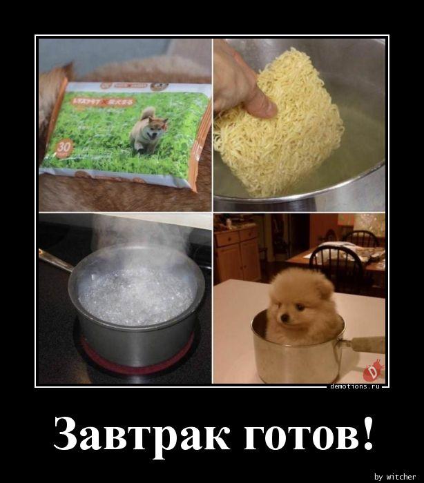Завтрак готов!