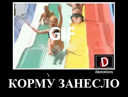КОРМУ ЗАНЕСЛО