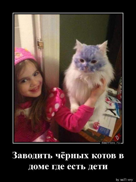 Заводить чёрных котов в доме где есть дети