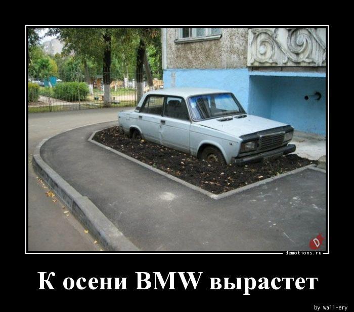 К осени BMW вырастет