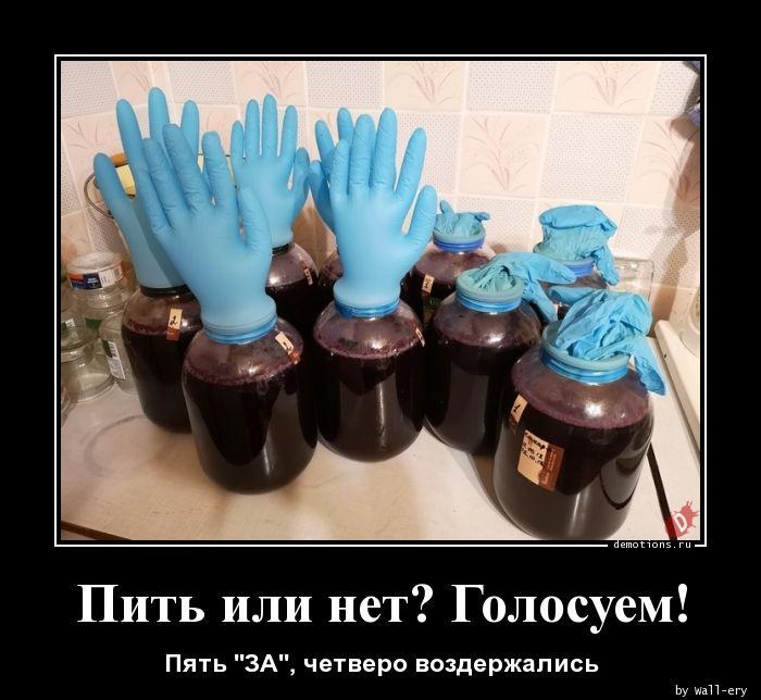 Пить или нет? Голосуем!