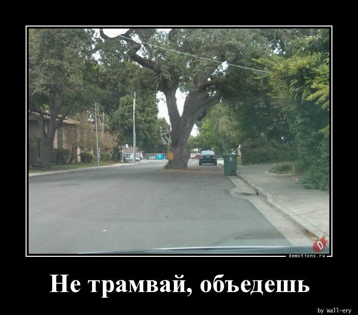 Не трамвай, объедешь