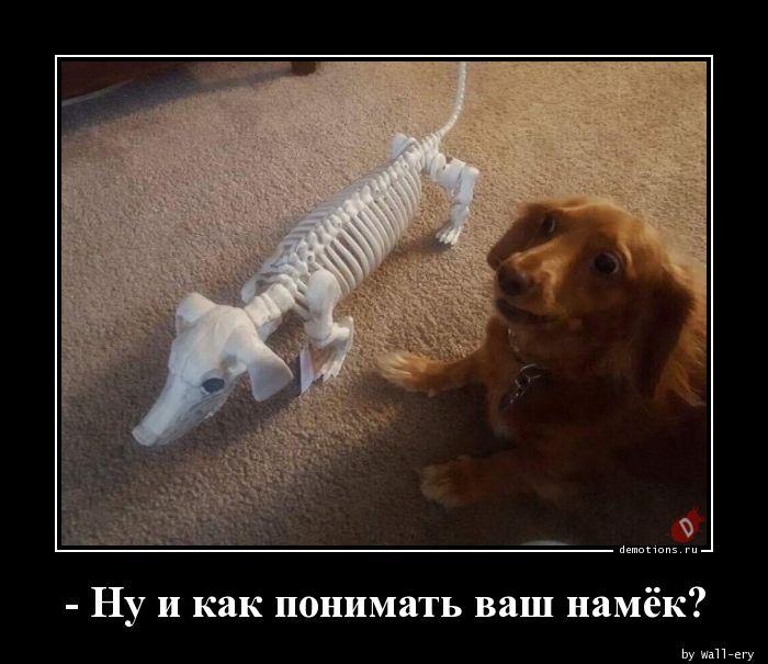 - Ну и как понимать ваш намёк?