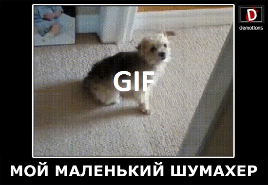 МОЙ МАЛЕНЬКИЙ ШУМАХЕР