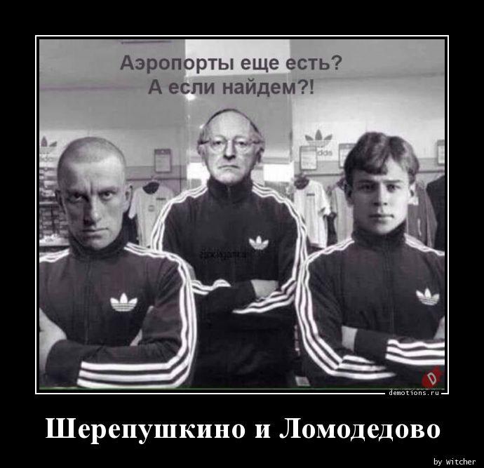 Шерепушкино и Ломодедово