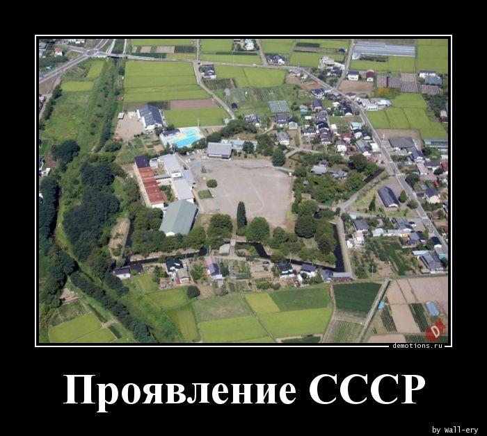 Проявление СССР