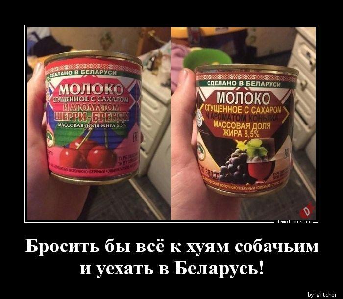 Бросить бы всё к хуям собачьими уехать в Беларусь!