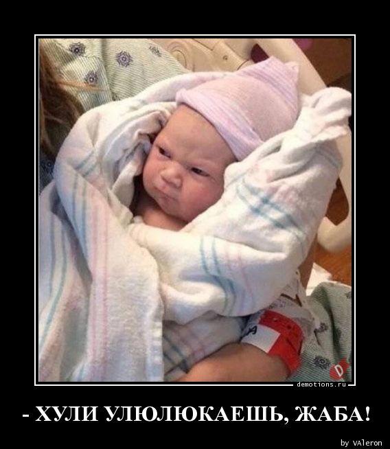 - ХУЛИ УЛЮЛЮКАЕШЬ, ЖАБА!