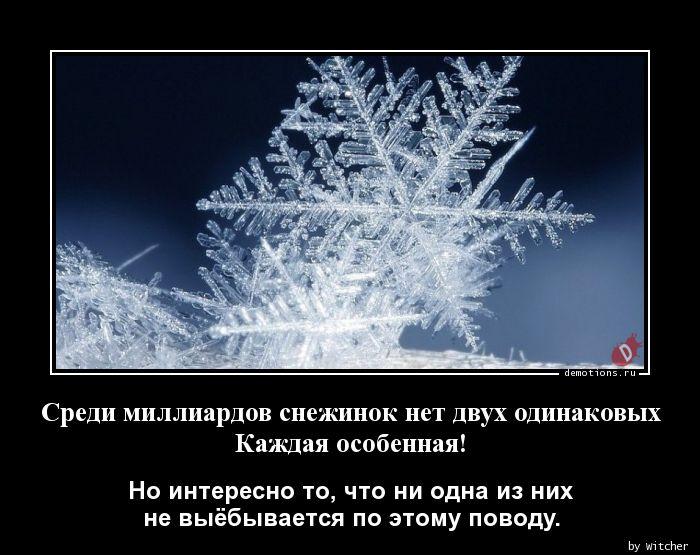 Среди миллиардов снежинок нет двух одинаковых Каждая особенная!