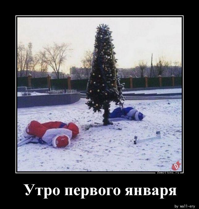 прикольные картинки утром первого января