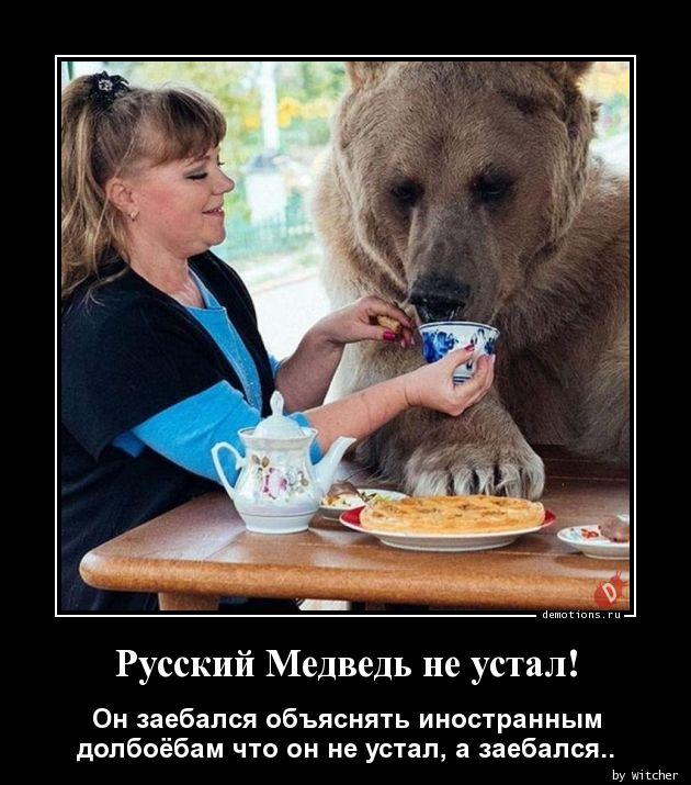 Русский Медведь не устал!